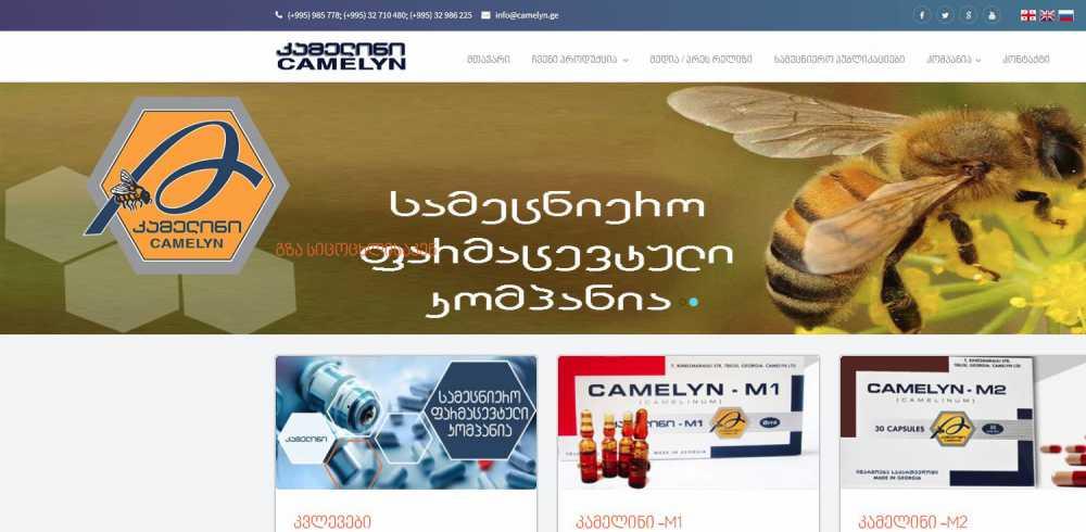 www.camelyn.ge